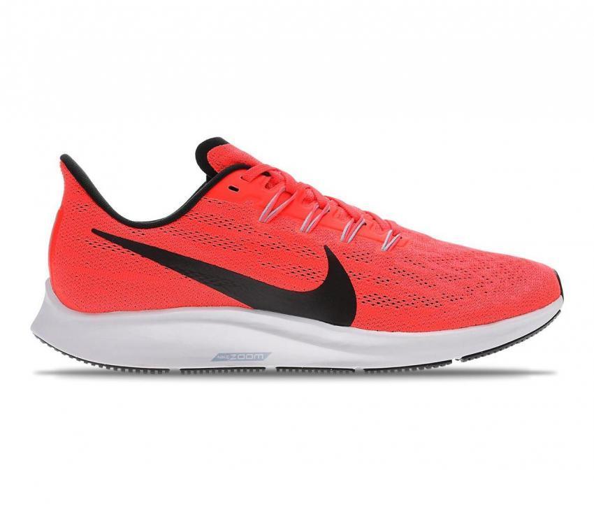 pegasus 36 scarpa running uomo 600