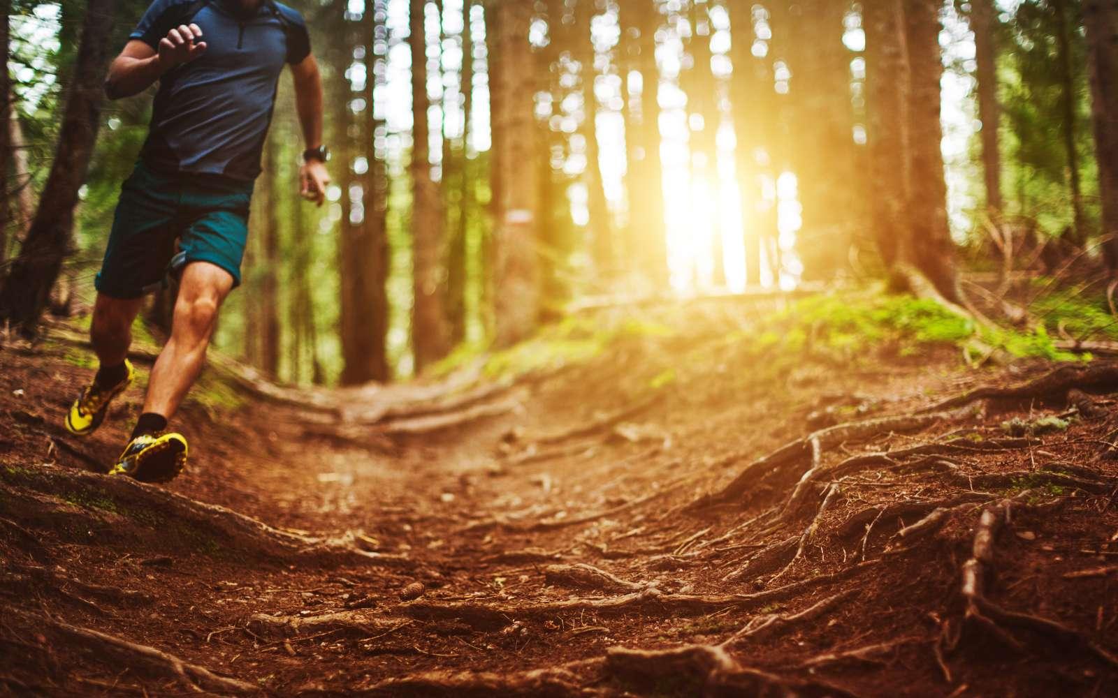 runner corre nel bosco con scarpe da trail running e abbigliamento tecnico